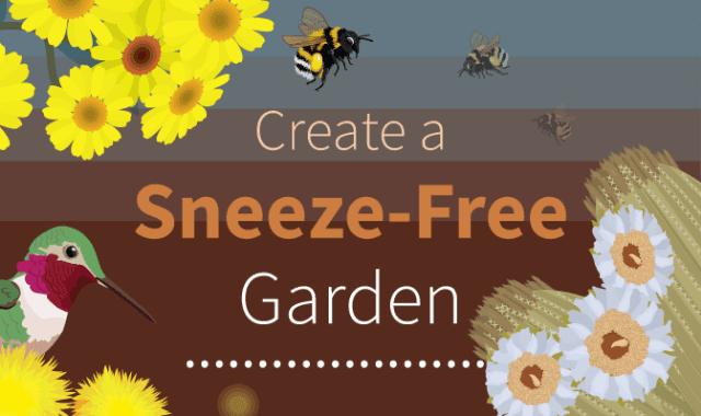 Create a Sneeze-Free Garden