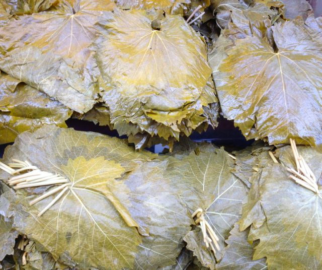 Grape Leaves Kadikoy Istanbul