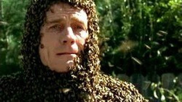 Malcolm in The Middle - Season 1 Episode 14: The Bots and the Bees
