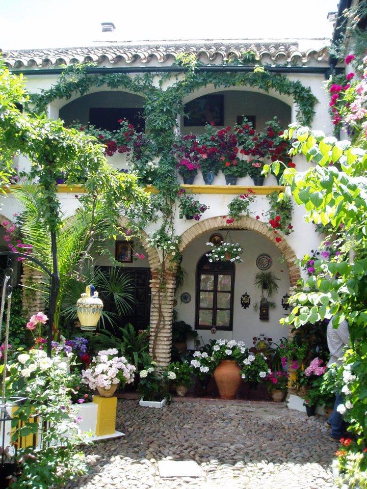 La flora de los patios de c rdoba for Plantas de balcon para todo el ano