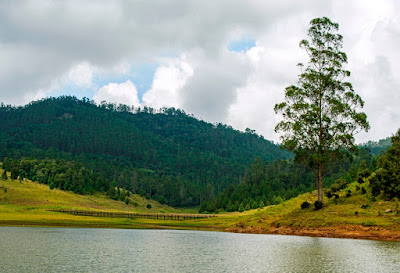 bvkmohan, bvkmohan blog, kodaikanal, elumpallam lake
