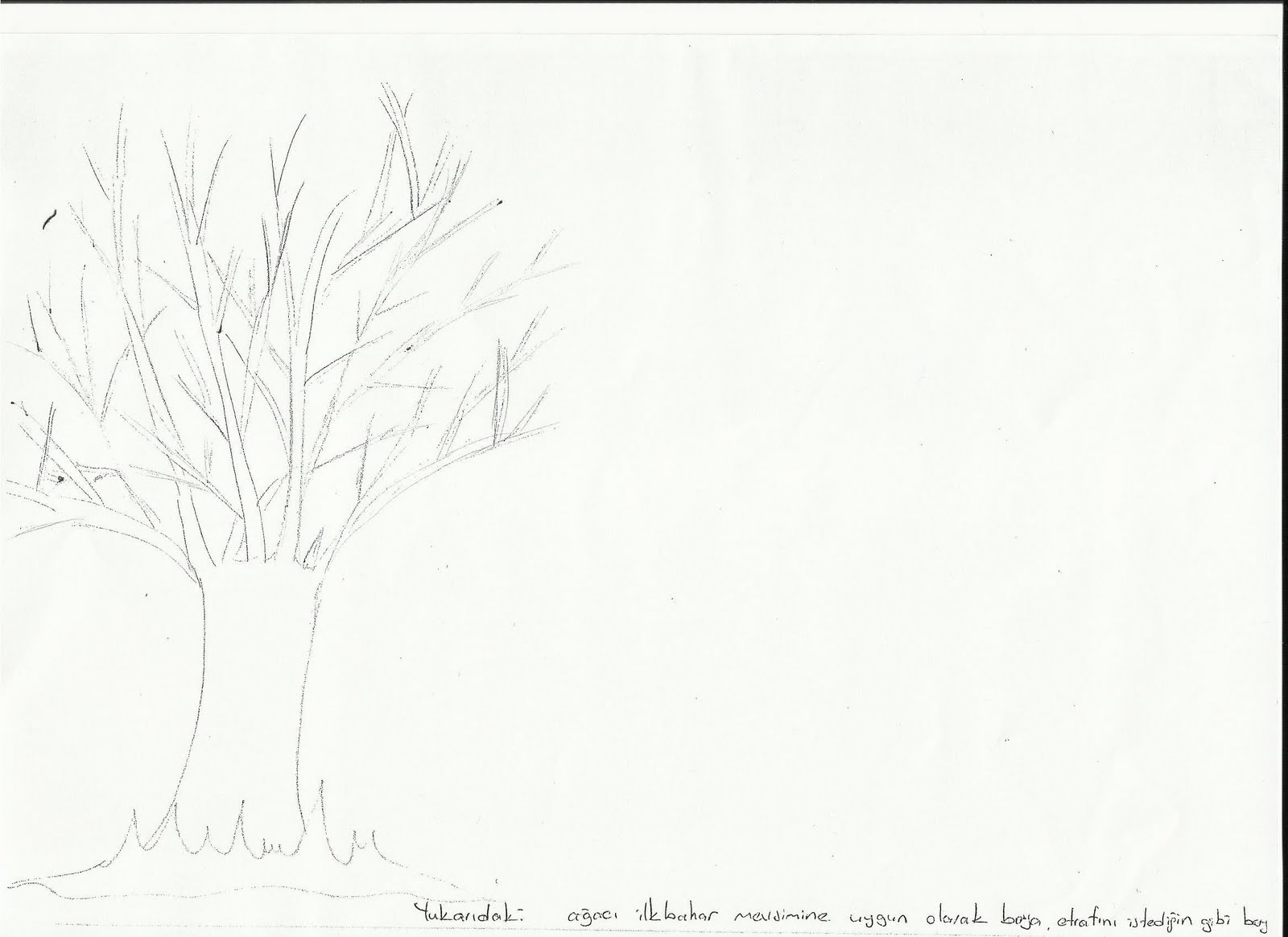 Okul öncesi Ilkbahar Ağacı Boyama Yazdırılabilir Boyama Sayfaları