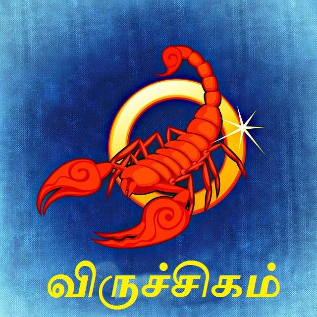 விருச்சிக ராசியின் பொதுவான குணம் - Expres Tamil