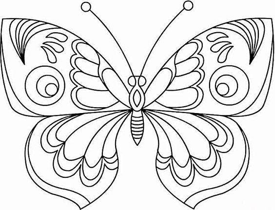 Tranh tô màu con bướm mềm mại