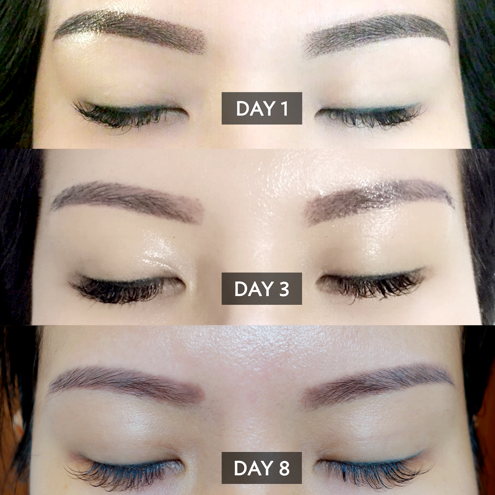 Softer brows with powder gradient eyebrow embroidery at for 1 salon eyebrow embroidery