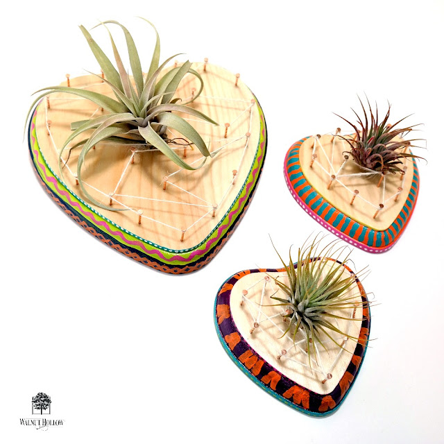 DIY String Art Air Plant Hearts by Dana Tatar for Walnut Hollow