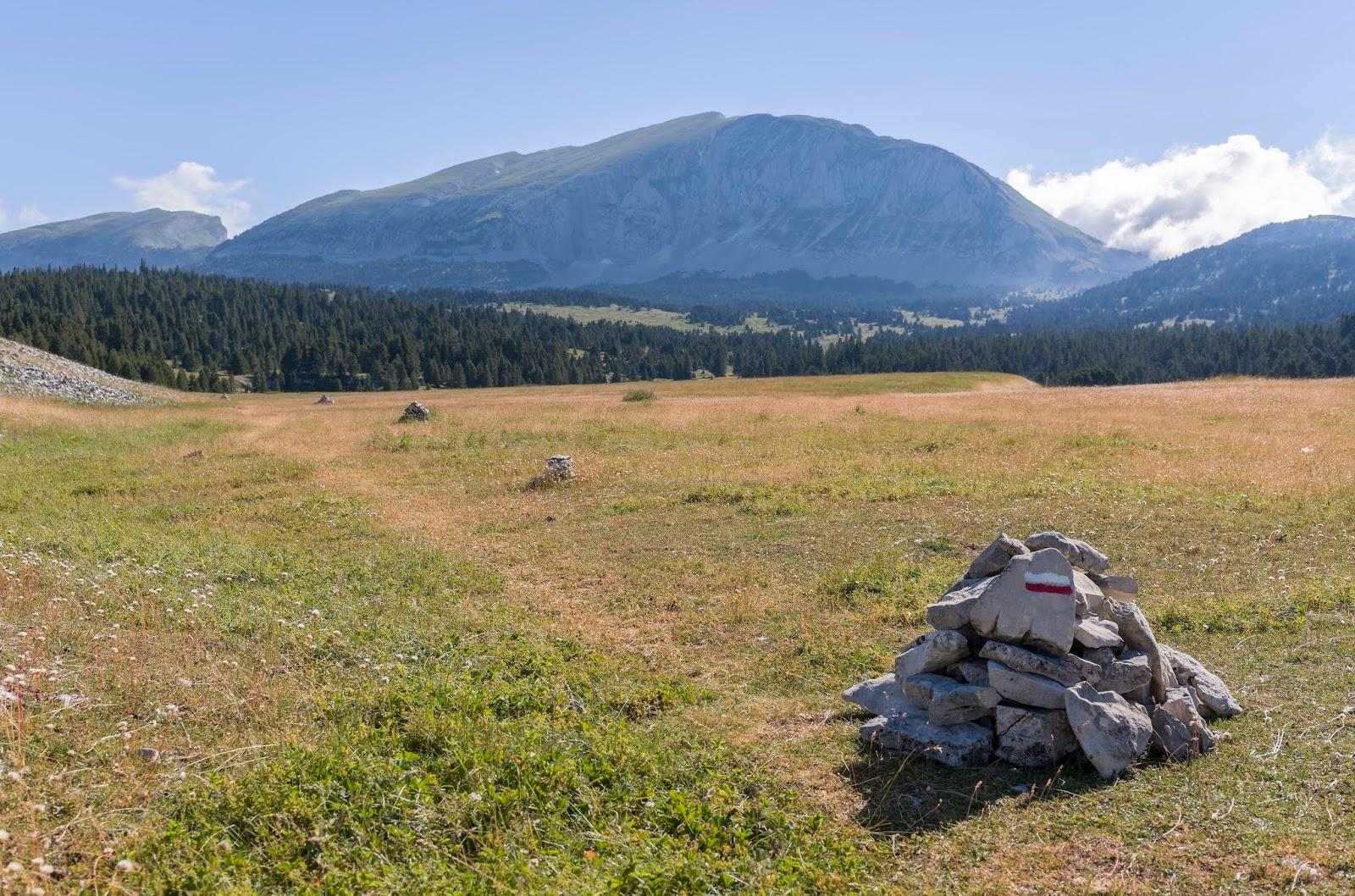 Vercors Grand Veymont Randonnée été Alpes France