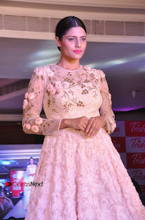 South Indian Celebrities Pos at Love For Handloom Collection Fashion Show  0038.jpg