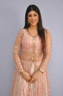 Actress Aditi Singh Latest Stills in Designer Dress at Guppedantha Prema Pressmeet 0004.jpg