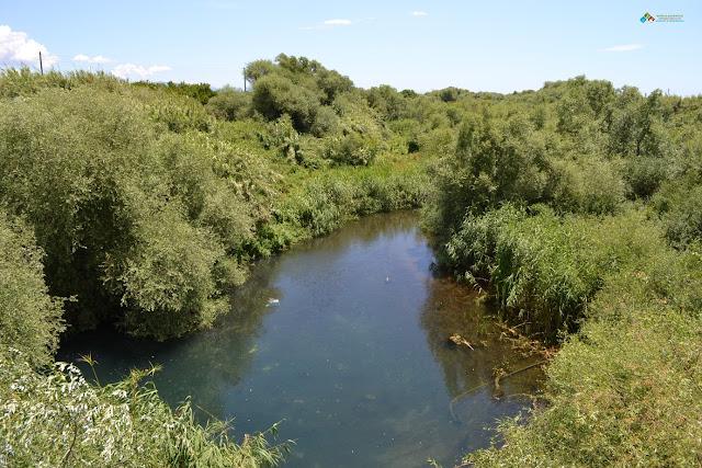 Ανάθεση παροχής υπηρεσιών συμβουλών για περιβαλλοντικά ζητήματα από τον Φορέα Διαχείρισης Πάρνωνα, Μουστού, Μαινάλου & Μονεμβασίας