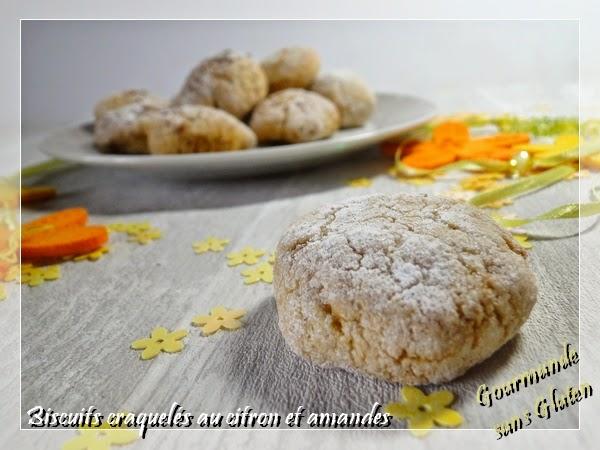 Gourmande Sans Gluten Biscuits Craqueles Citron Amande Sans Gluten