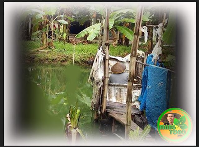 Kakus Jamban Empang atawa Walungan