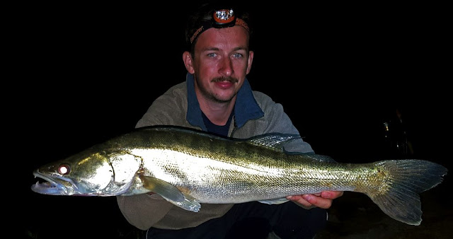Night fishing for zander