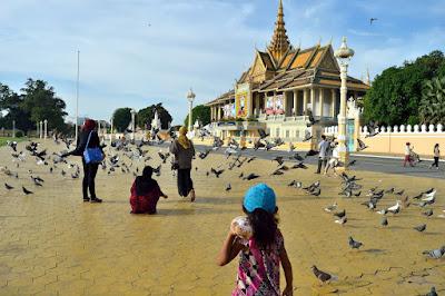 royal palace phnom penh cambodia pigeon feeding