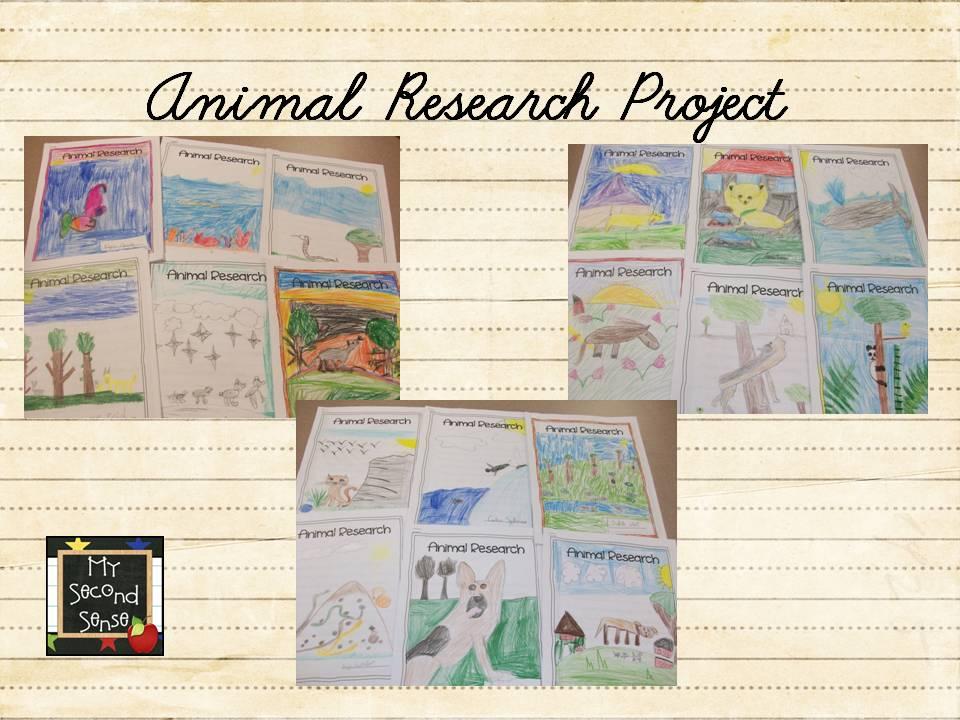 Buy essays papers Writing Good Argumentative Essays  LOrma animal research paper kids Nicki