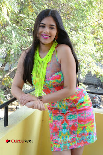Telugu Actress Prasanna Stills in Short Dress at Inkenti Nuvve Cheppu Press Meet Stills  0104.JPG