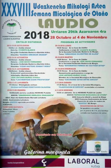 XXXVIII SEMANA MICOLOGICA DE OTOÑO 2018 en Llodio
