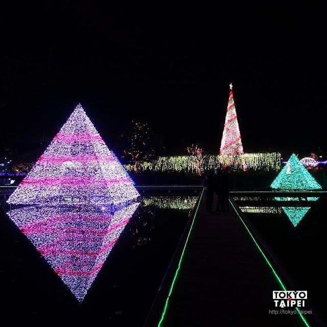 【光之花庭園】350萬顆燈泡 點亮冬季的足利花卉公園