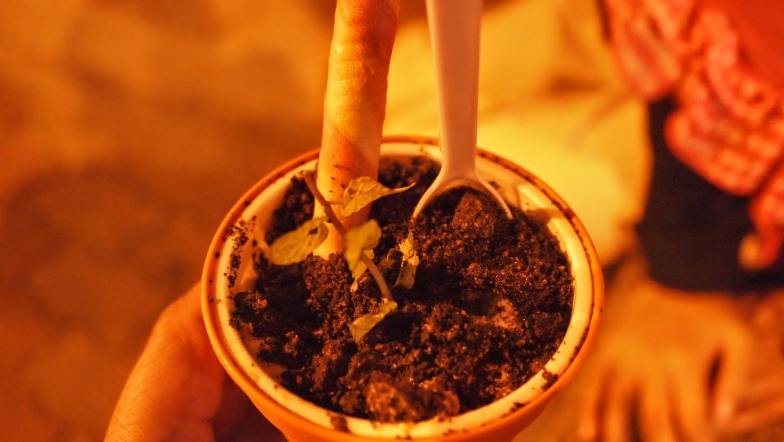 Aiskrim Pasu (Flower Pot Ice Cream) - Versi Pasar Karat