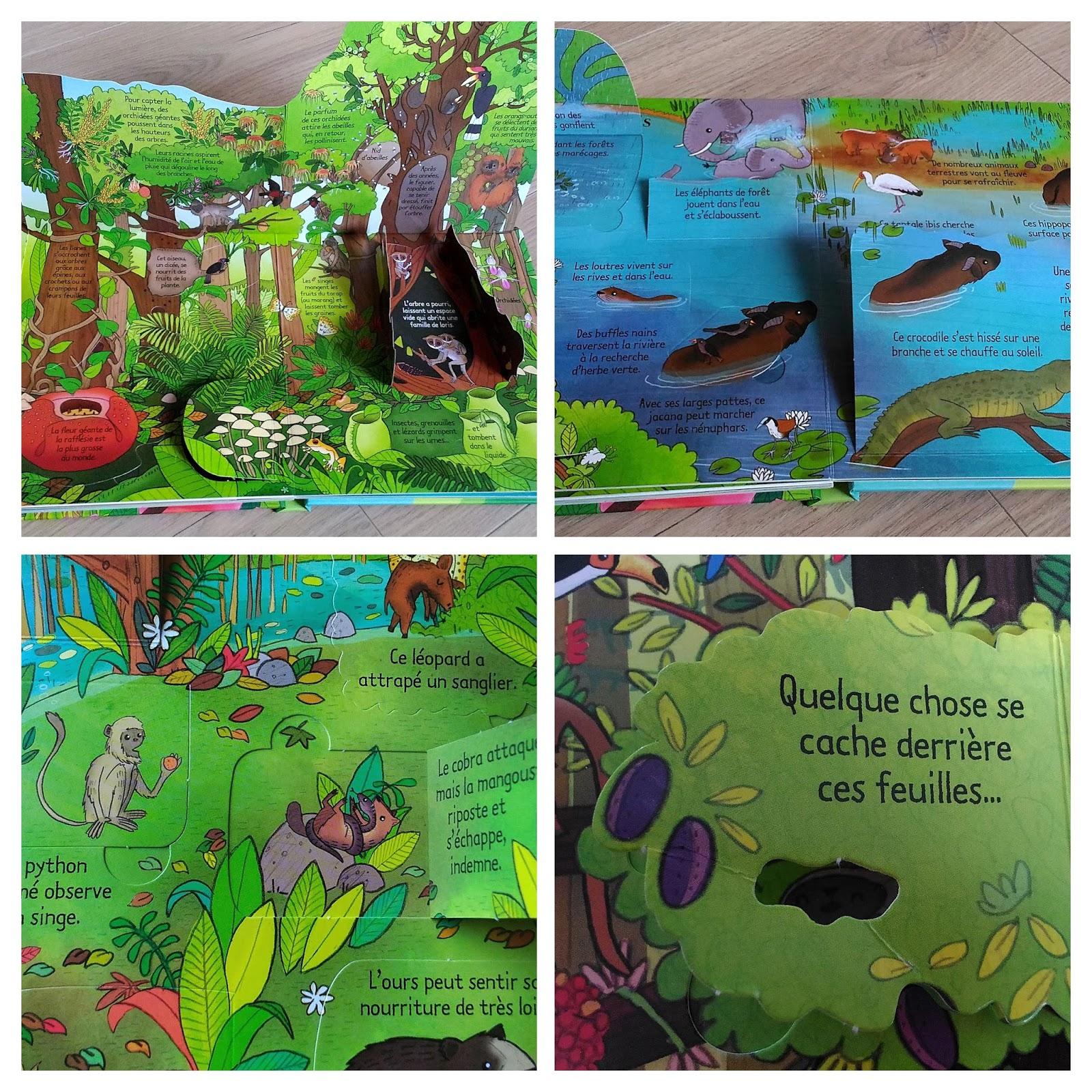 La jungle - sous la mer - éditions Usborne
