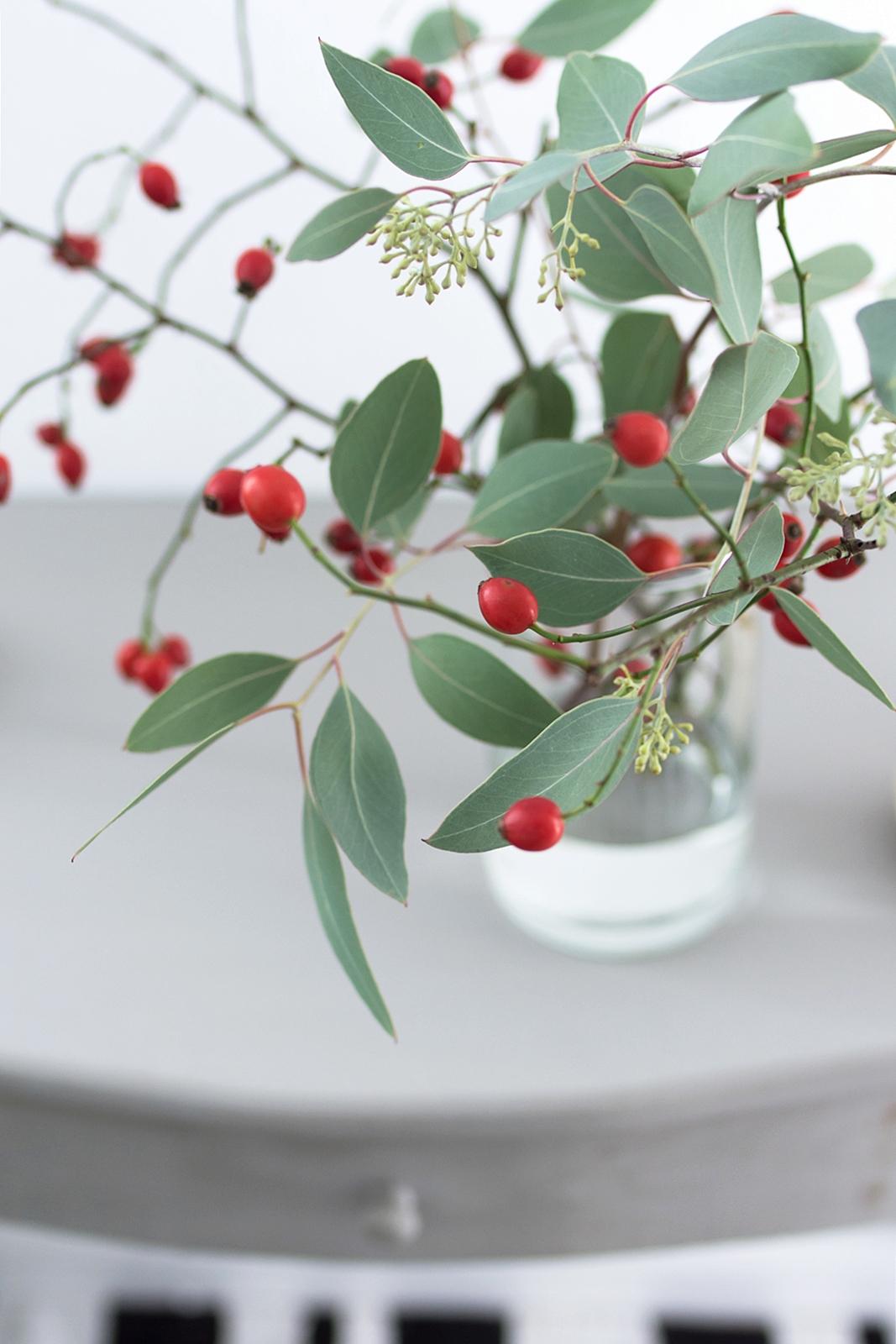 herbstdeko ganz schlicht mit hagebutten eukalyptus und wei en k rbissen sinnenrausch diy. Black Bedroom Furniture Sets. Home Design Ideas