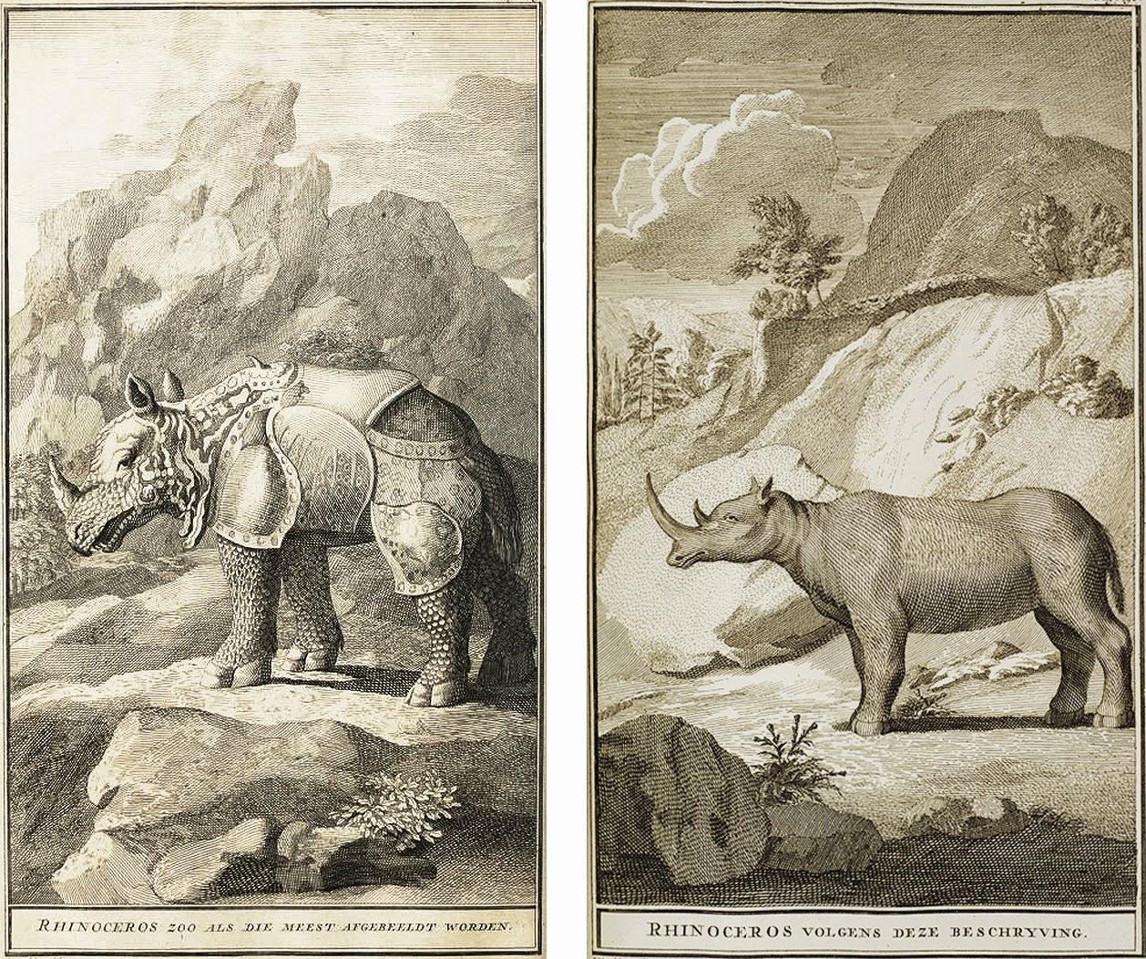 artbouillon: Dürer's Rhinoceros: Art, Exotica, and Empire