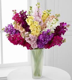 الفرق بين الزهور والورود الازهار والورد different between wared and azhaar flowers
