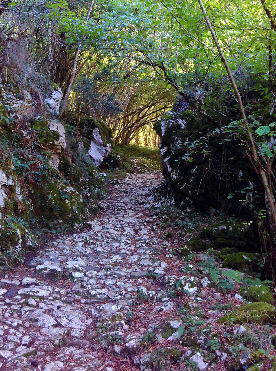 Rutas por Asturias: Circular por El Camin Encantau desde la Venta el Pobre