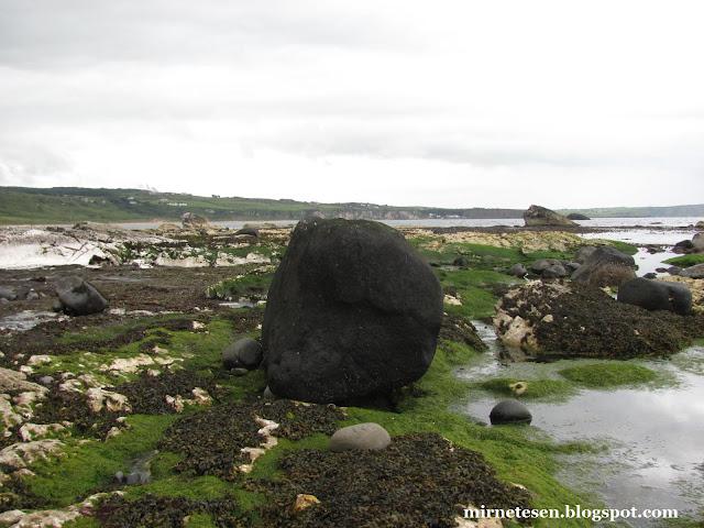 Побережье графства Антрим, Северная Ирландия