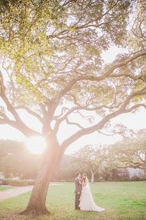 Kempner park weddings