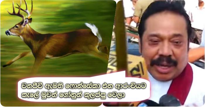 http://www.gossiplankanews.com/2018/05/mahinda-fonseka-minister-post.html