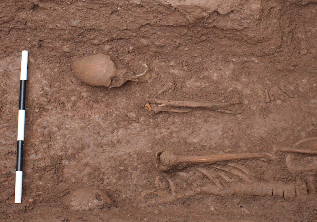 Stabbed in the back: Rare pre-Norman burials found at Hereford Cathedral