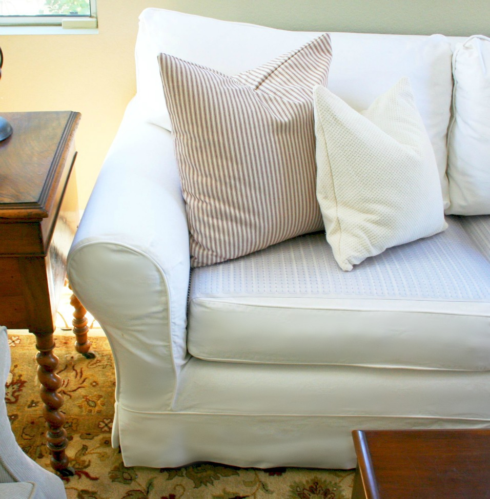 Dog Chewed Up Rug: Diana Mulder: How To Keep Your Dog Off Your Living Room Couch
