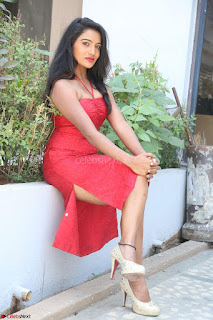 Mamatha sizzles in red Gown at Katrina Karina Madhyalo Kamal Haasan movie Launch event 036.JPG