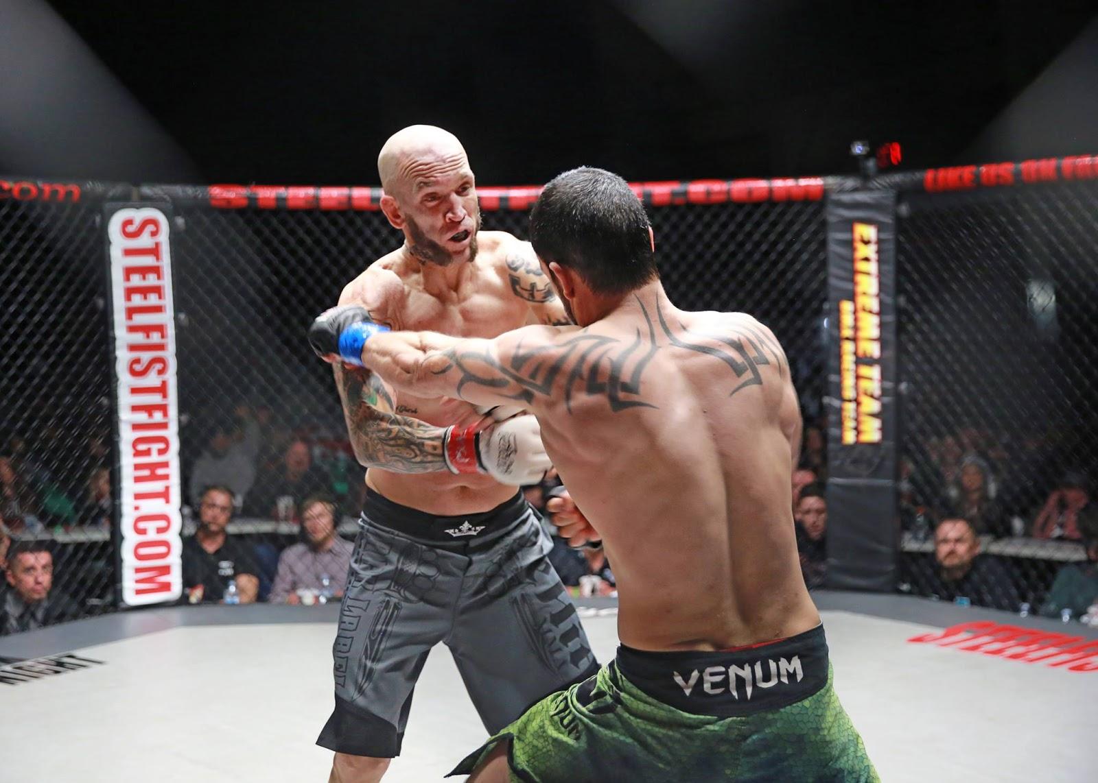 Plus ça Fighting style gentile fist