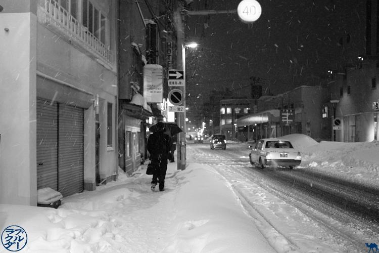 Le Chameau Bleu - Les rues d'Aomori la nuit sous la neige - Tohoku - Japon