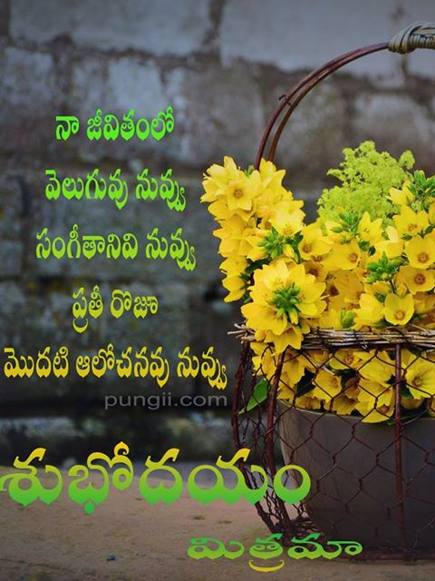 Good morning quotes in telugu for friends - pungii