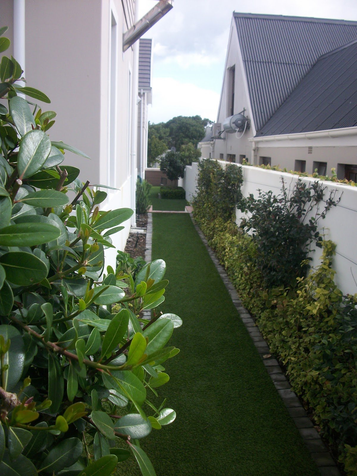 Gardening in hermanus landscaping planting and for Garden design 101