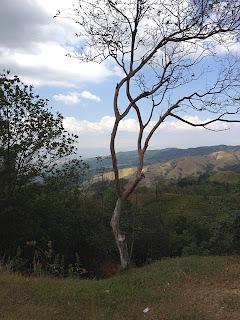 roadside landscape, Costa Rica