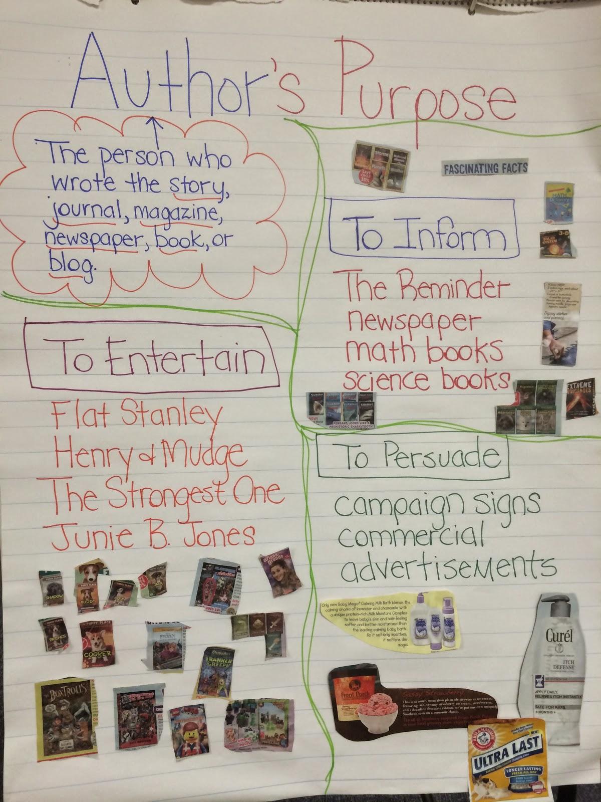The Pirate Queen Teacher Author S Purpose