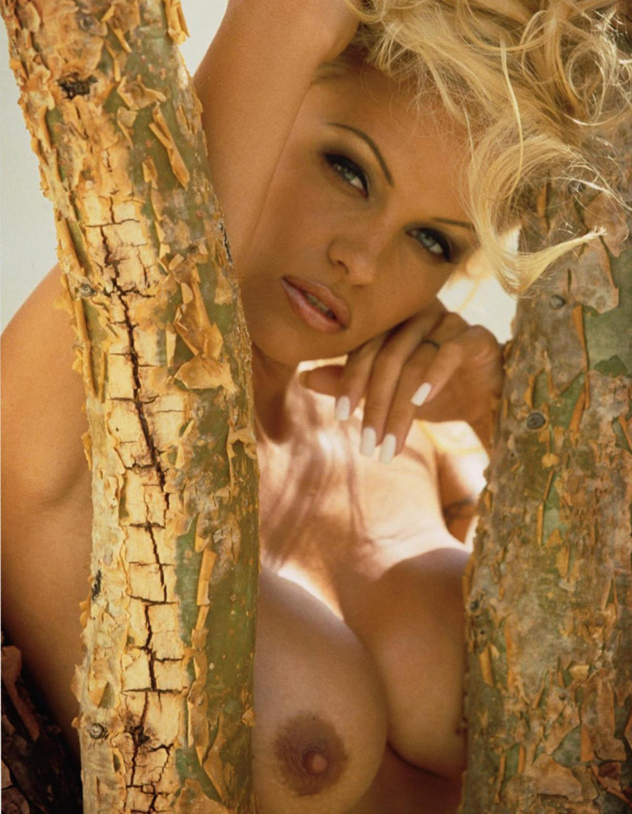 Pam anderson nude close up