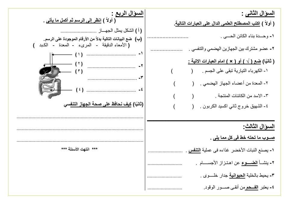نماذج امتحانات اخر العام 2018 للصف الرابع الابتدائي في كل المواد 5