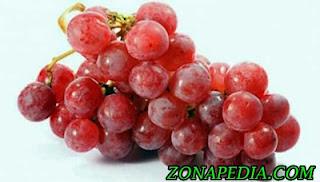 6. Buah Anggur Anggur adalah buah yang sarat dengan manfaat kesehatan, termasuk untuk kulit yang bersih. Sangat ideal untuk mengkonsumsi anggur merah beserta bijinya.    Karena dalam biji ini mengandung antioksidan kuat yang mampu mengurangi infeksi kulit. Biji ini digunakan untuk mengobati psoriasis dan eksim. Sahabat dapat memakannya langsung atau bersama dengan keju.