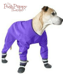DOG JOG RAINSUIT