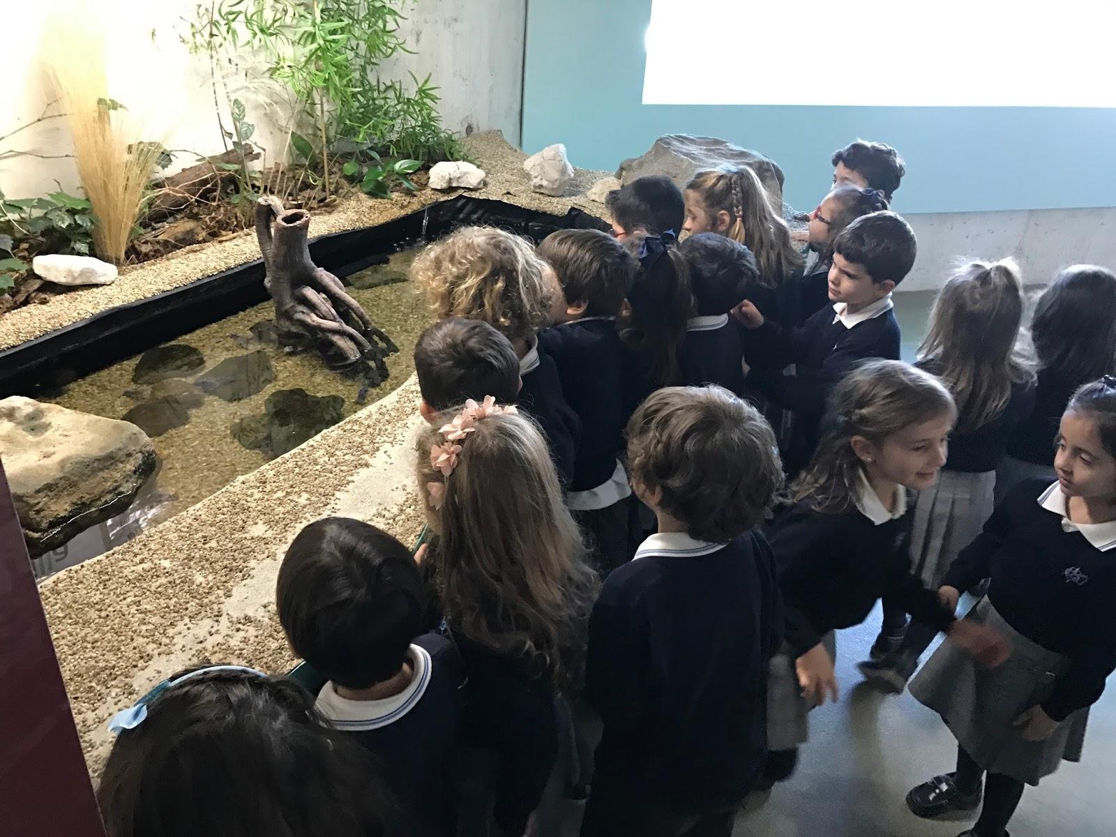 Agustinas Valladolid - Infantil 4 - Museo de la Ciencia 1