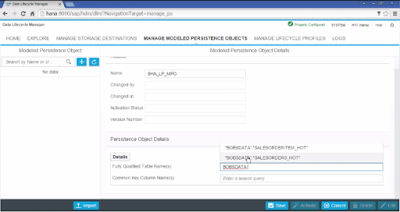 SAP HANA Data Lifecycle Manager and Material