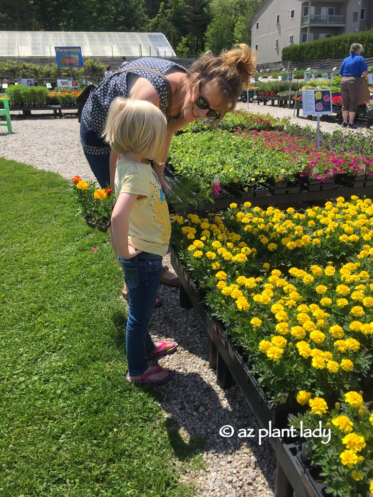 Gardening With Kids Painting And Planting A Flower Pot
