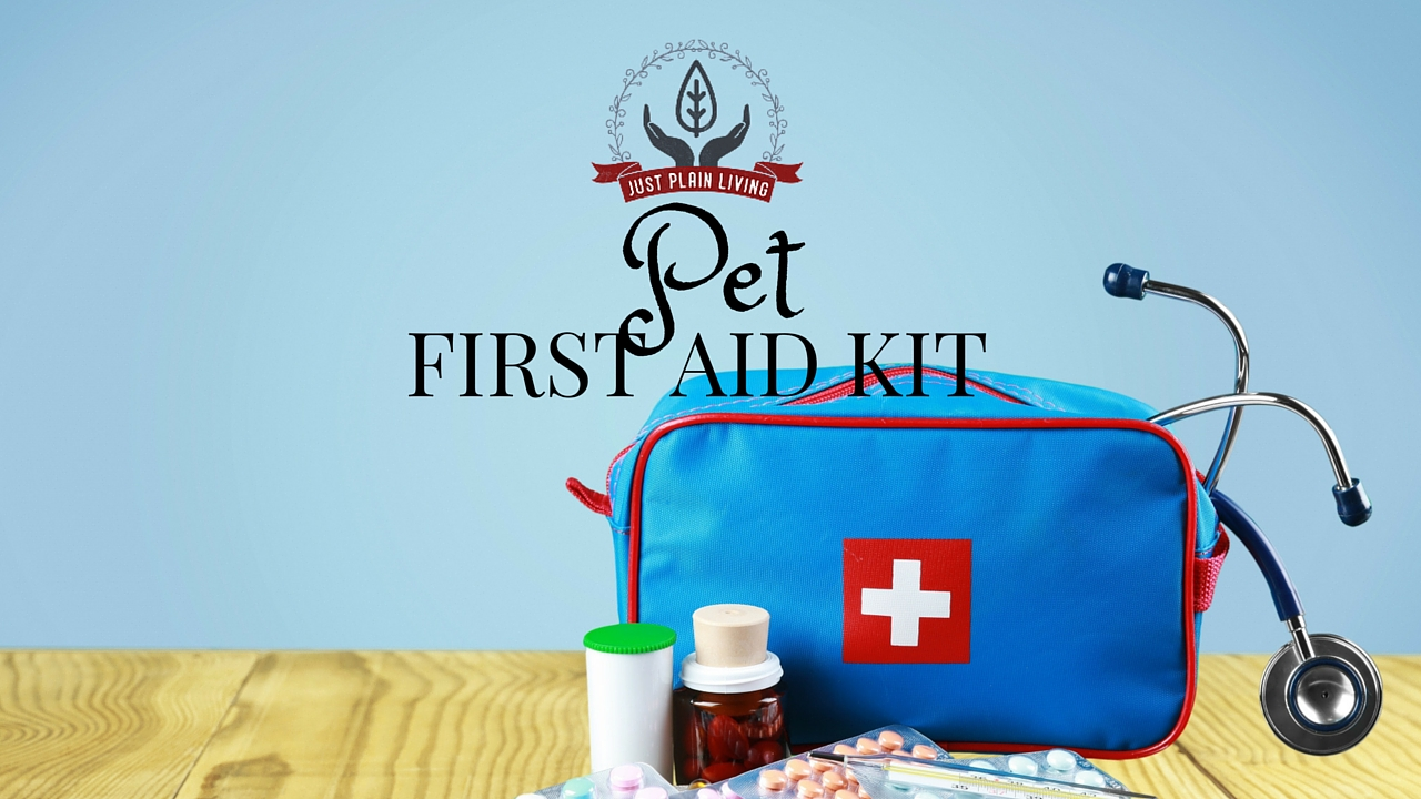 """Once you have your Disaster Planning Kit ready for your pets, you need to figure out what goes in the """"first aid kit for pets"""" part - it's important!"""