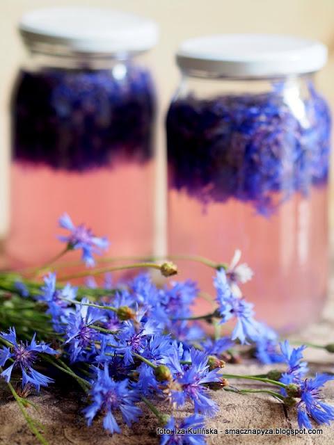 napoj blawatkowy, wino chabrowe, winko modrakowe, modraki, kwiaty jadalne, lemoniada kwiatowa