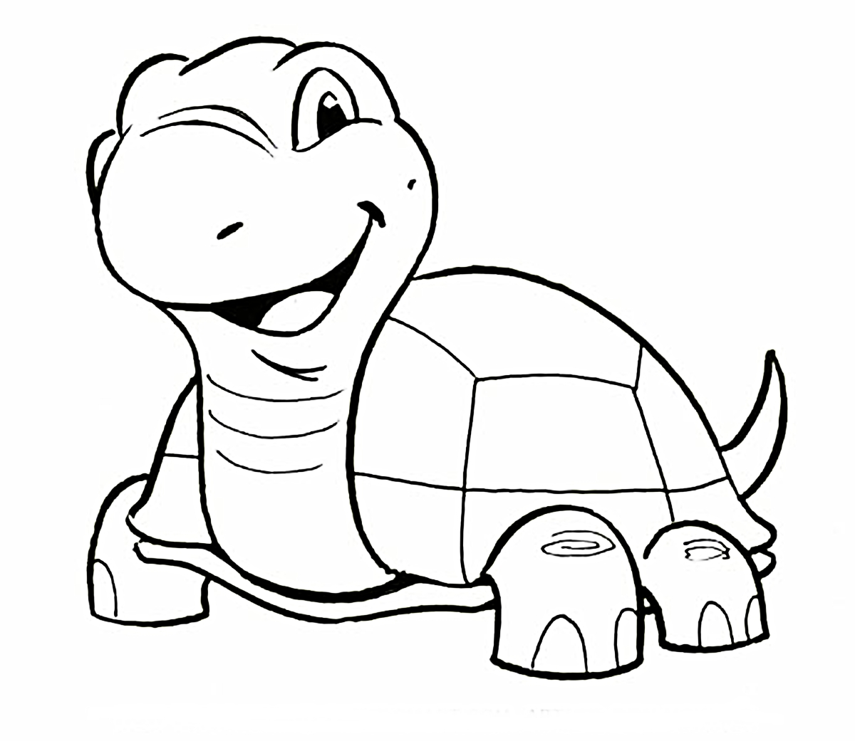 It's just a graphic of Smart Turtle Cartoon Drawing